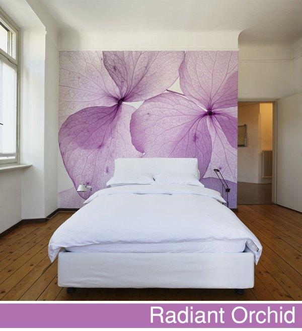 fototapeta-big-trix-radiant_orchid