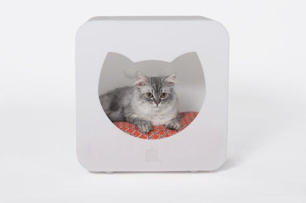 kitty_kasa_5