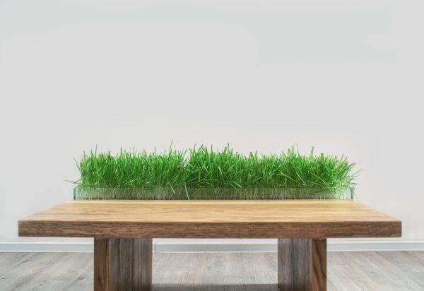 stol_in_wood_we_trust_-zielony_design