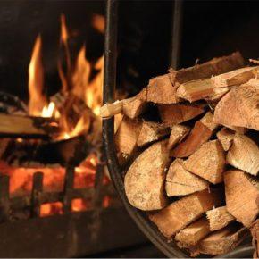 Jak wybrać dobre drewno kominkowe? Sprawdź nasze porady.