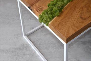 stolik z mchem na środku