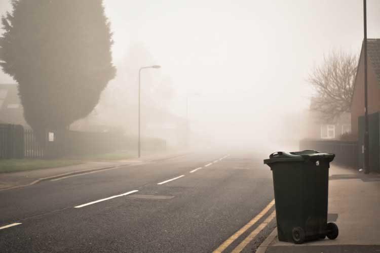 kubeł na śmieci ustawiony przy drodze