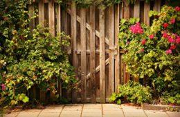ogrodzenie i bramka wykonane z drewna