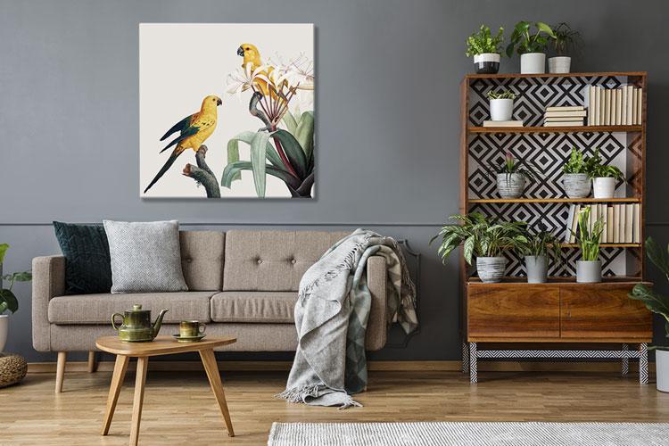 obraz z papugami w stylu retro