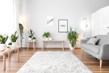 jasne wnętrze z białym dywanem